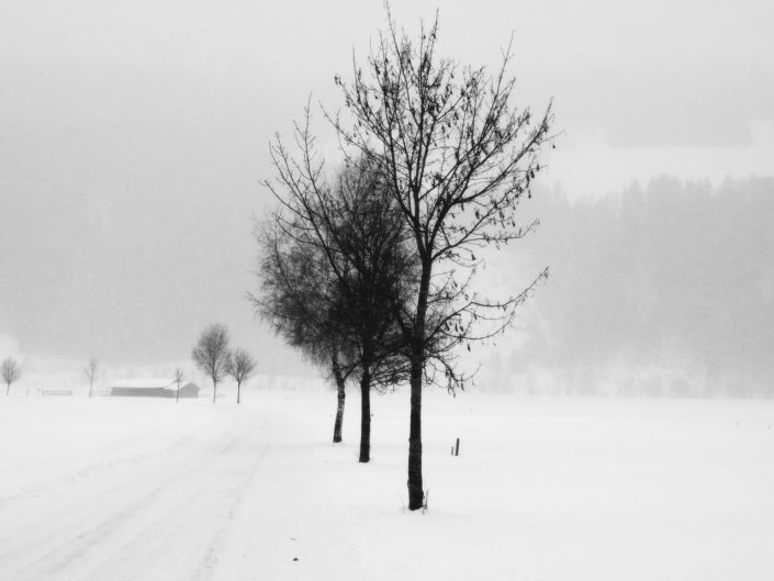 Pure White V © Anita Kovacevic // Category: Landscape/Seascape/Nature // Austria